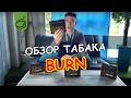 Новый табак для кальяна Burn Бёрн ОБЗОР mp3