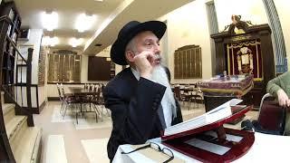 №4 мудрость жизни Рав Йосeф Зальцман уроки торы истина торы и галахи
