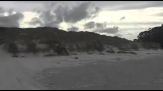 BEST TRAVELING PLACES TO GO Rarewa Beach, Far North, (NEW ZEALAND)