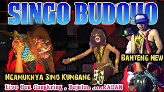 Singo Budoyo