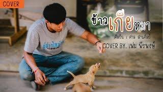 ข้าวเกียหมา - ศาล สานศิลป์ [Cover by : เฟม พีรพงษ์]