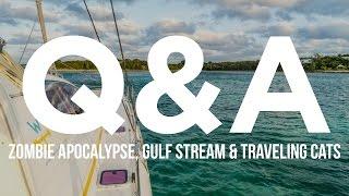 Q & A: Zombie Apocalypse, Gulf Stream & Traveling Cats