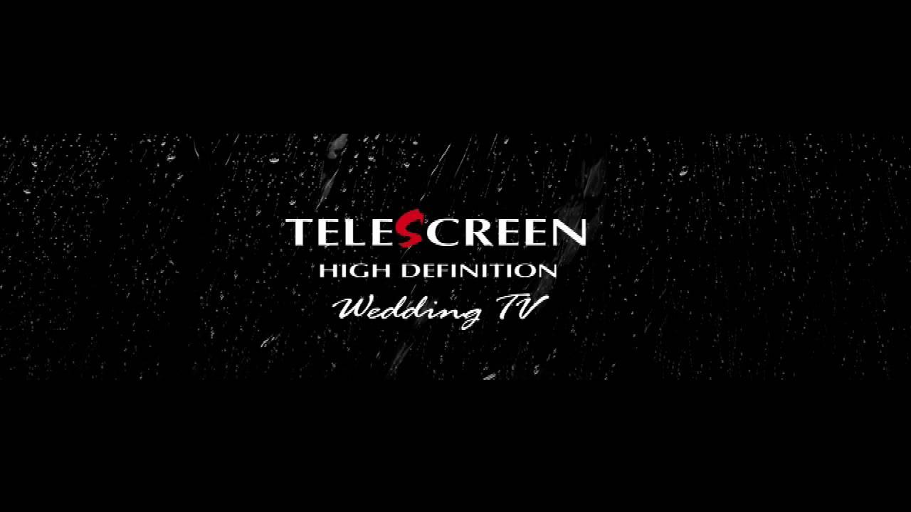 telescreen definition