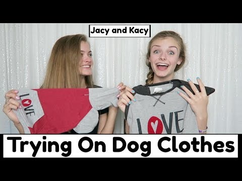 Trying On Dog Clothes & Costumes Challenge ~ Jacy and Kacy