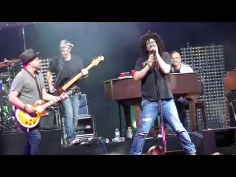 Counting Crows - Sullivan Street