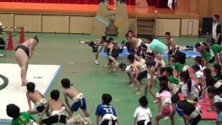 【葛城ちびっこ相撲】武蔵川部屋の力士と準備運動をするあい❤四股踏みは...
