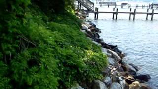 waterfront homes for sale annapolis md mls6861170