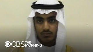 Osama bin Laden's son killed in military operation
