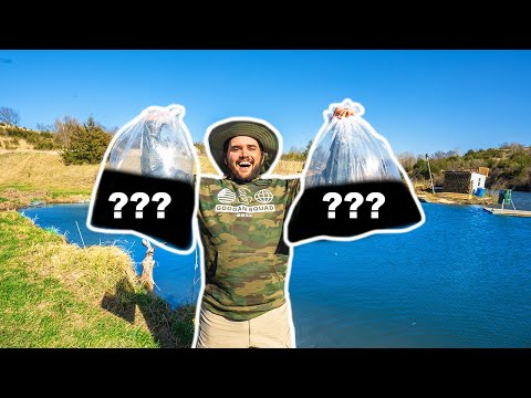 STOCKING My BACKYARD POND With TROPHY FISH!!!