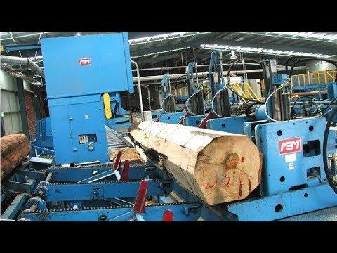 EXTREME Automatic Wood Sawmill Machine Modern Technology - Fastest Wood Cutting Machines