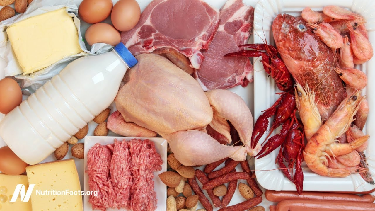 Dietary Cholesterol and Cancer