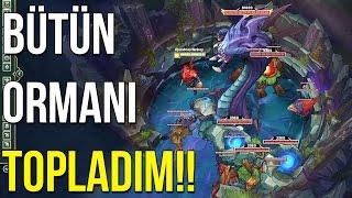 LOL'DE BÜTÜN YARATIKLARI BARON PİTİNE TOPLADIM!!
