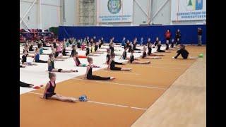 Трехкратная чемпионка Европы провела мастер класс для Нижневартовских гимнасток