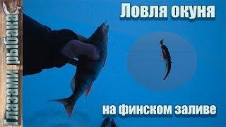 Ловля окуня на финском заливе. Ловля на мормышку.