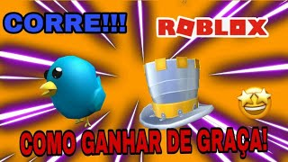 HOW TO WIN THE CHÁPEU AND THE BIRD!!! -ROBLOX-Peter Blox Gamer