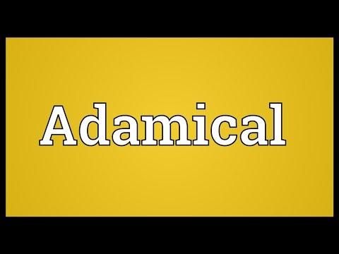 Header of Adamical