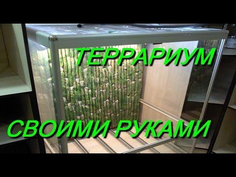 видео: ТЕРРАРИУМ СВОИМИ РУКАМИ