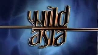 Best Documentary 2016   Wildlife Nature Documentary HD Wild Asia A Forest for All s 3gp