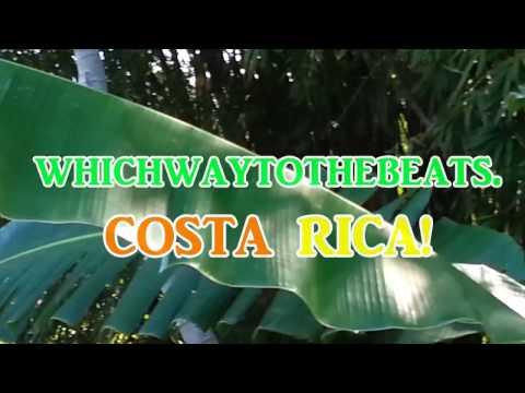 Travel in Costa Rica to Arenal, Tabacon, Monte Verde, Montezuma & San Jose