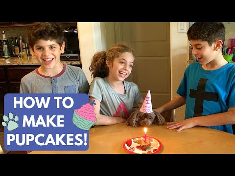 How To Make DIY Pupcakes | An Easy Kid-Friendly Homemade Peanut Butter Dog Treat Recipe