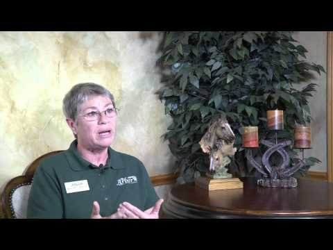 """""""Addiction Treatment Texas"""" and Horses: The Healing Power of Equine Assisted Therapy   The Arbor"""