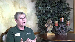 """""""Addiction Treatment Texas"""" and Horses: The Healing Power of Equine Assisted Therapy 