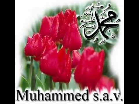 Muhammedi nur gül bebek ile ilgili görsel sonucu