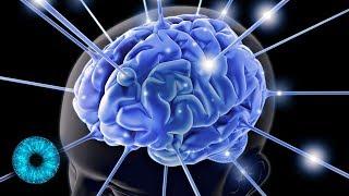 Künstliches Denken: Menschliche Gehirne mit dem Internet verbinden - Clixoom Science & Fiction