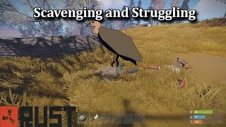 Scavenging and Struggling (Rust Co-op Survival) #42