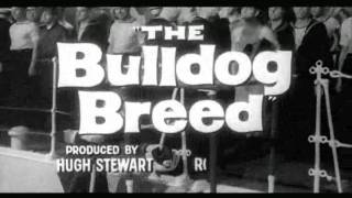 The Bulldog Breed - UK Trailer