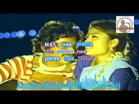 CHINUKULAA RAALII  Telugu Karaoke For Male Singers With Lyrics