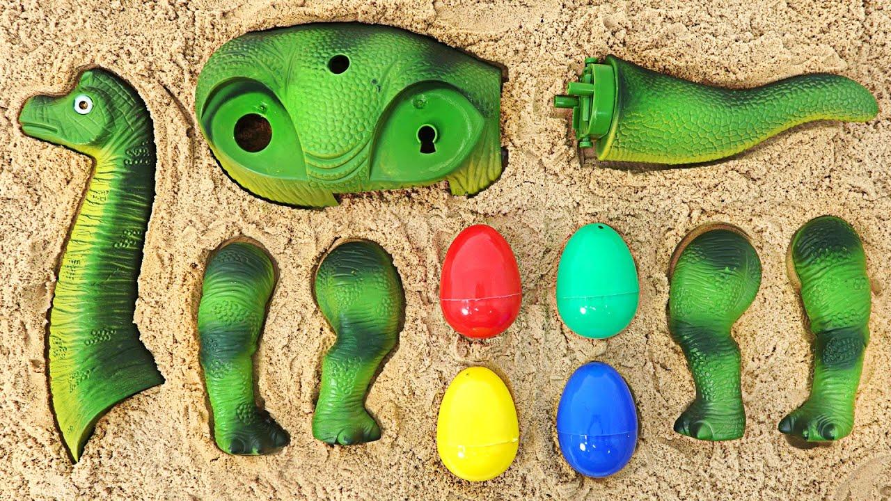 로보카폴리와 모래속 공룡 조립하기   두두팝토이