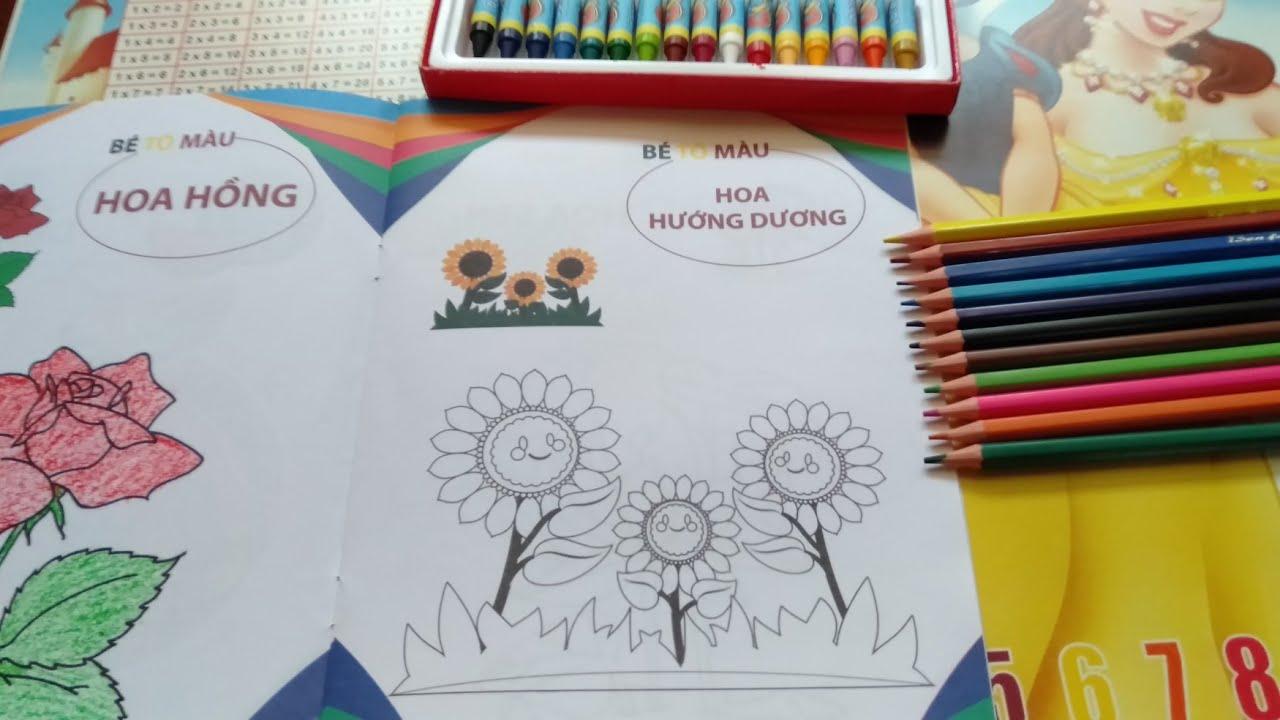 How to color the sunflower –  Cách tô màu hoa hướng dương