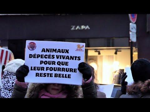 Manifestation Zapa Paris 16 ème - 02 décembre 2017