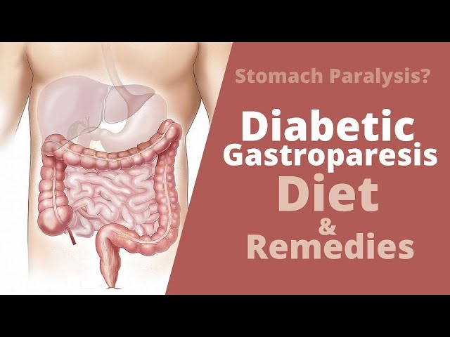 diabetes with paralyzed stomach diet