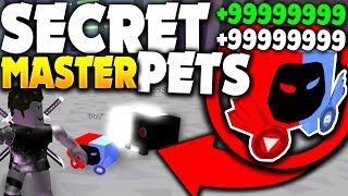 THE OWNER GAVE ME SECRET *MASTER TIER PETS* (INSANE!) - Roblox Pet Simulator