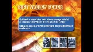 Rift Valley fever (New) (MP4)