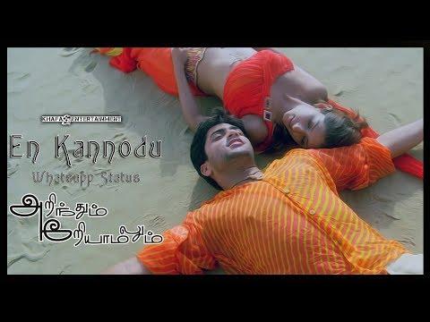 En Kannodu - Lyric Whatsapp Status | Arinthum Ariyamalum Tamil Movie | Yuvan Shankar Raja | 1