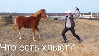 Учим коня не бояться хлыста. Клёвый.
