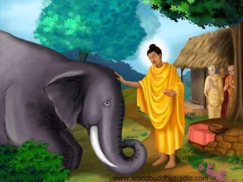 Kavi Bana Karapaththa Jathakaya Massanne Vijitha Thero 0712738311