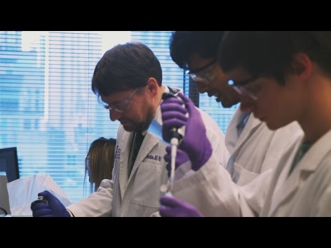 Northwestern goes nano with cancer-fighting tech: LiveBIG 2016-17