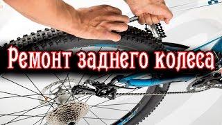 Ремонт заднего колеса велосипеда [ТО втулки, Шатается кассета](В этом видео мы попытались рассказать и показать как провести техническое обслуживание колеса от горного..., 2016-05-04T07:15:10.000Z)