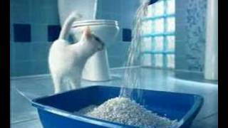 Kuklachev Cats Work / Catsan Comercial (1)