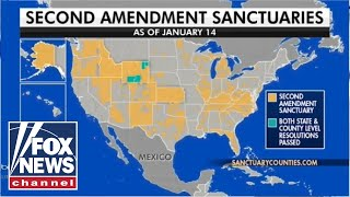 Several states consider becoming 'Second Amendment Sanctuaries'