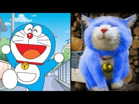 Những Nhân Vật Hoạt Hình Doraemon Có Thật Ngoài Đời !