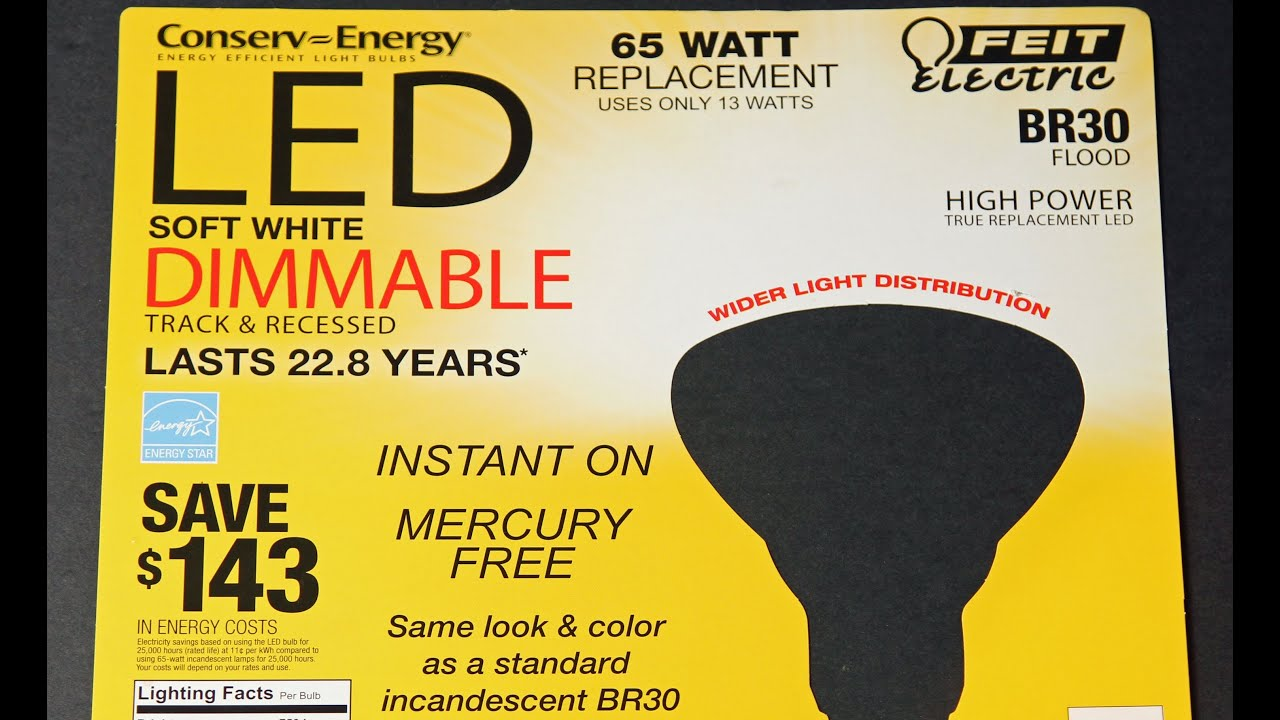 FEIT LED Light Bulb From Costco FAILS After 4 Months