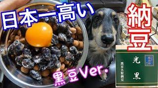これはくうの競馬予想が的中したご褒美動画です。 日本一高い納豆二代目...
