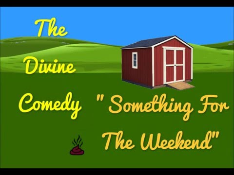 The Divine Comedy  Something For The Weekend