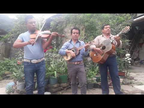 Trio Ramito Huasteco- Clave Privada (ensayo)