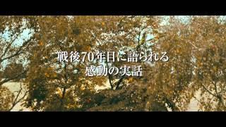 映画『ふたつの名前を持つ少年』予告編
